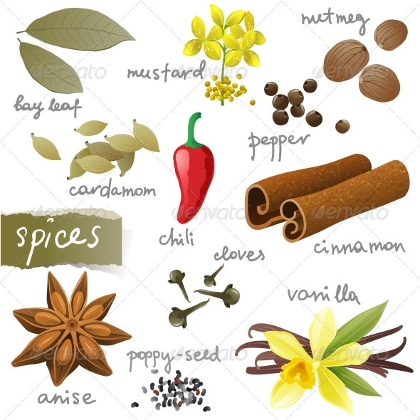 GraphicRiver Set of Spices 8092696