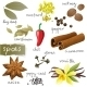 Set of Spices - GraphicRiver Item for Sale