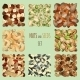 Nuts and Seeds Set - GraphicRiver Item for Sale