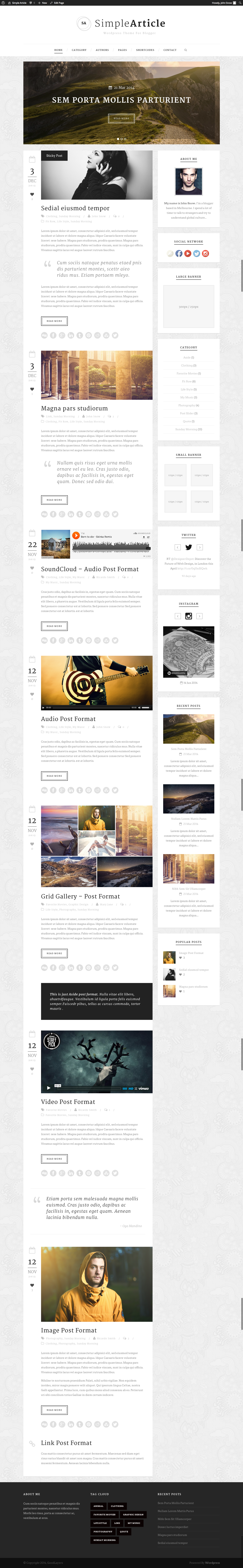 Simple Article - WordPress Theme For Personal Blog - index page with color changed