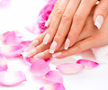 Manicure and Hands Spa. Beautiful Woman Hands Closeup - PhotoDune Item for Sale