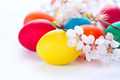 Easter. Colorful easter eggs with spring blossom flowers - PhotoDune Item for Sale