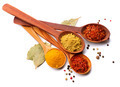 Spices and herbs. Curry, saffron, turmeric, cinnamon over white - PhotoDune Item for Sale