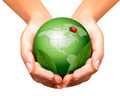 Green world with leaf and ladybug in woman hands. - PhotoDune Item for Sale