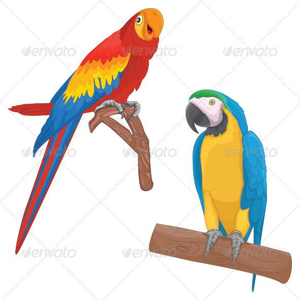 GraphicRiver Parrots Illustration 8103554