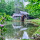 Historic Edwin B. Mabry Grist Mill (Mabry Mill) in rural Virginia on Blue Ridge Parkway   - PhotoDune Item for Sale