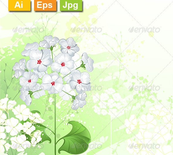 GraphicRiver White Wild Flowers 8105560
