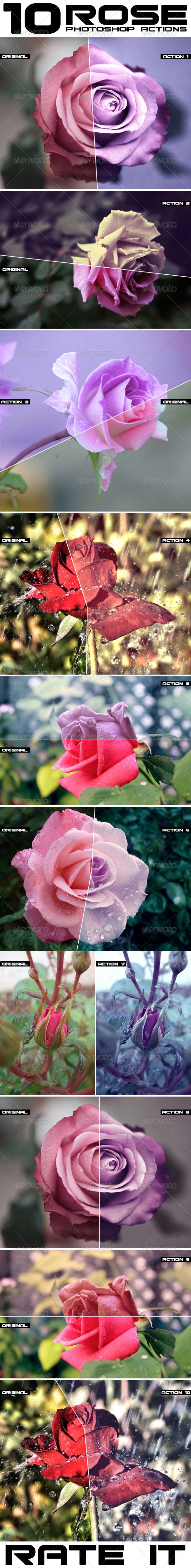 GraphicRiver Rose Flowers Actions 8100500