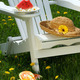 Closeup of slice of watermelon on adirondack chair - PhotoDune Item for Sale