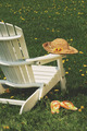 Straw hat on chair - PhotoDune Item for Sale