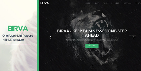 BIRVA - Responsive Portfolio Theme - Virtual Business Card Personal
