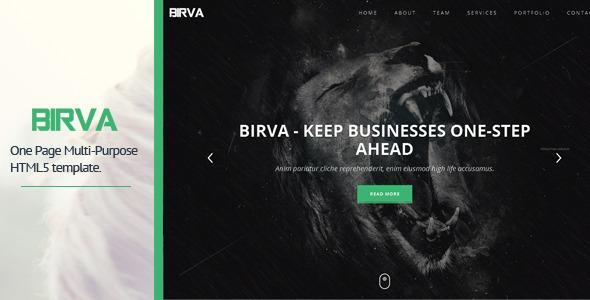 ThemeForest BIRVA Responsive Portfolio Theme 7989885