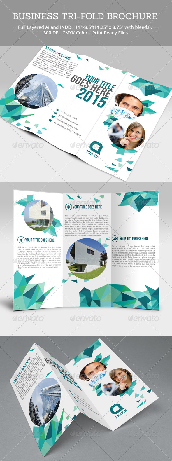GraphicRiver Business Tri-Fold Brochure 8120279