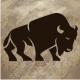 Buffalo Biz - GraphicRiver Item for Sale