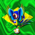 Brazil Macaw Parrot with Soccer Ball - PhotoDune Item for Sale