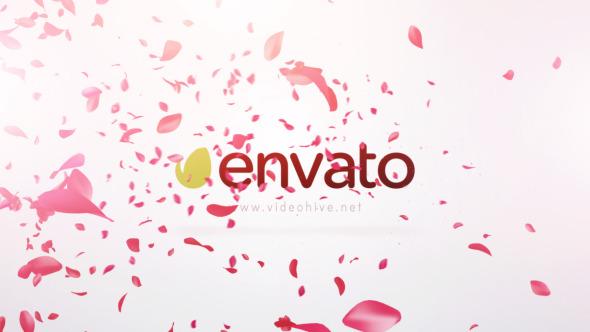 Petals Logo Reveal