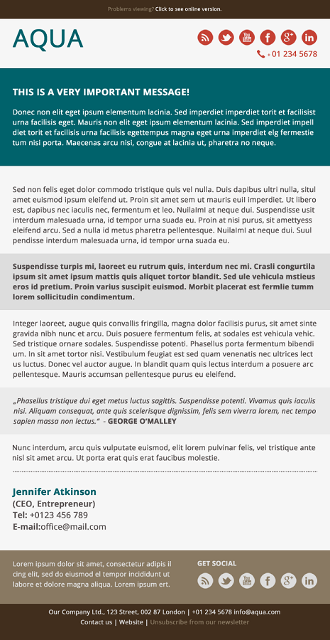 Aqua - Corporate Flat Email Template