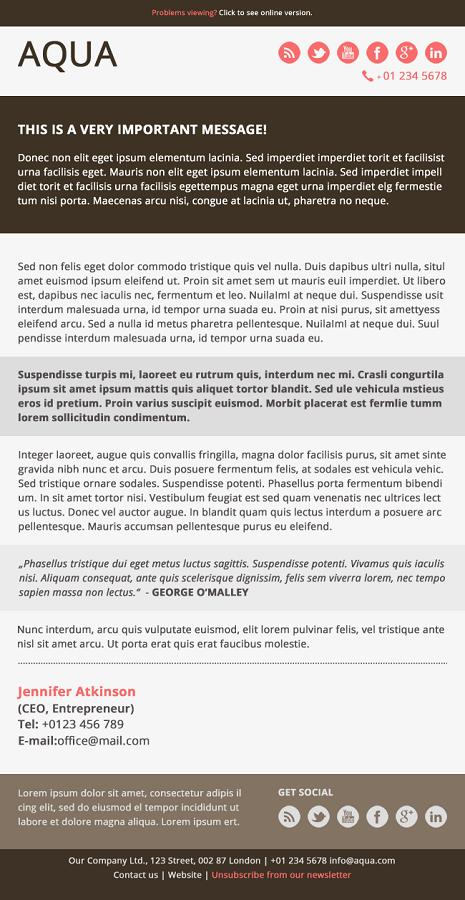 Aqua - Corporate Flat Email Template