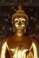 Golden buddha in temple - PhotoDune Item for Sale