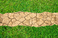 Drought breaks ground fissures of the ground and green grass. - PhotoDune Item for Sale