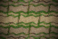 Brick walkway with grass. - PhotoDune Item for Sale