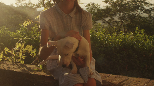 Girl is Stroking a Dog at Sunset Time
