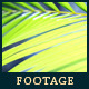 Green Leafs 25 - VideoHive Item for Sale