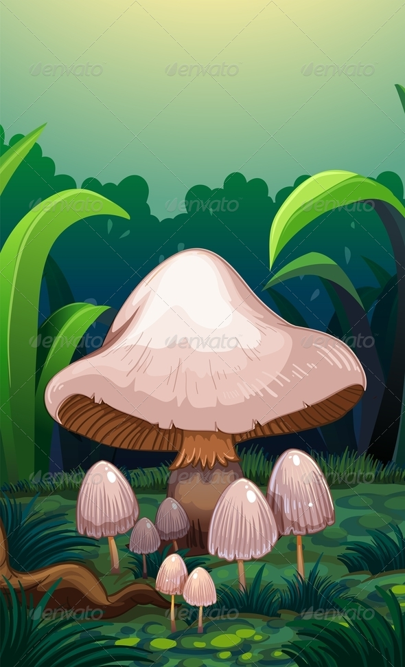 GraphicRiver Mushrooms in the Forest 8131856