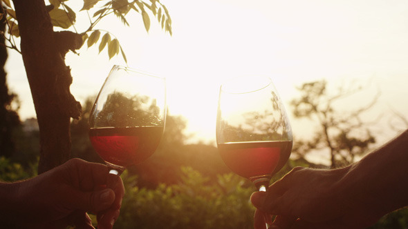 Raising Wine Glasses in Sunset Light