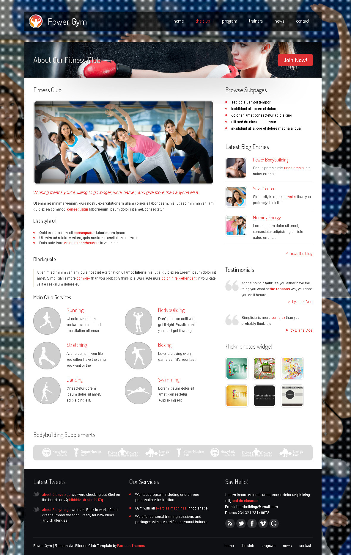 Power Gym - Responsive Wordpress Theme - details page design