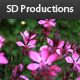 Flower - Eight - Nature Collection - VideoHive Item for Sale