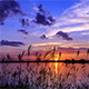 Vivid Evening Lake Side - VideoHive Item for Sale