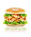 Delicious chicken burger - PhotoDune Item for Sale