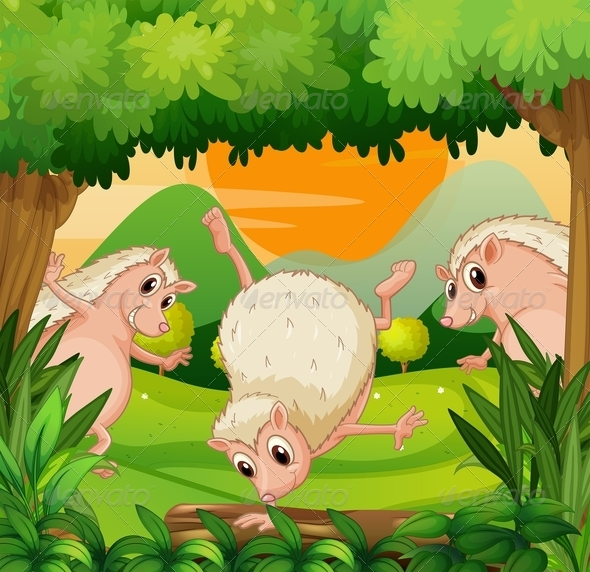 GraphicRiver Three hedgehogs playing in the woods 8139028