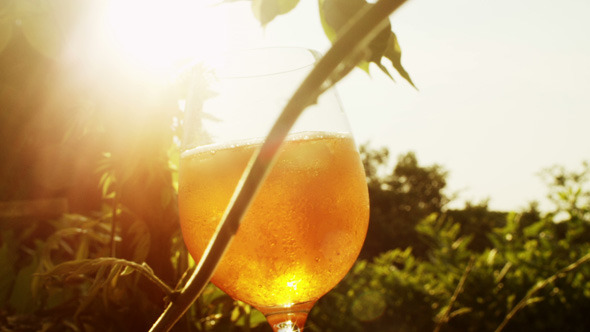 Glass with Wine in Sunlight