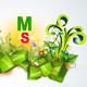 MSDesignPlus