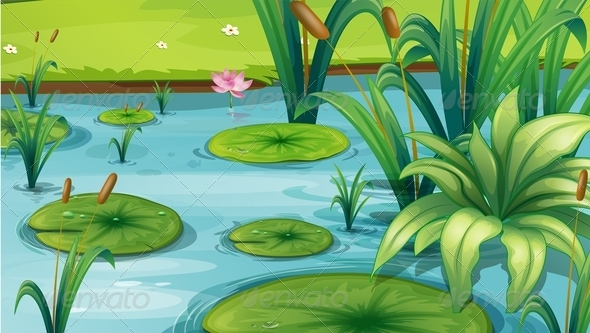 GraphicRiver Pond with Plants 8151044
