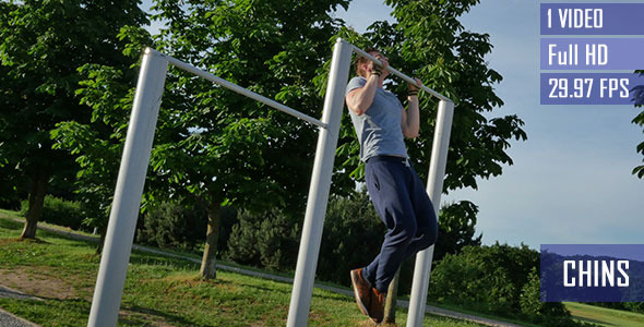 Pull Up Exercise In The Park
