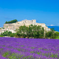 lavender field and town of Grignan - PhotoDune Item for Sale