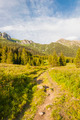 Trail - PhotoDune Item for Sale