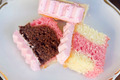 Neapolitan Cake Slices - PhotoDune Item for Sale