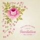 Card of Color Rose - GraphicRiver Item for Sale