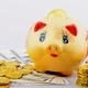 Piggy bank with gold coins and dollar banknotes - PhotoDune Item for Sale