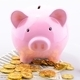 Pink Piggy bank with gold coins and dollar banknotes - PhotoDune Item for Sale