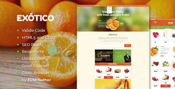 ThemeForest Exotico Responsive HTML Template 8166768