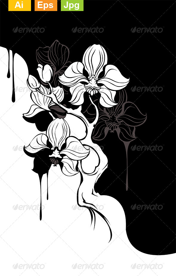 GraphicRiver Monochrome Orchid 8170997