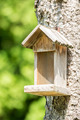 Small Bird House - PhotoDune Item for Sale