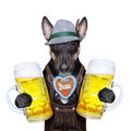 bavarian beer dog - PhotoDune Item for Sale