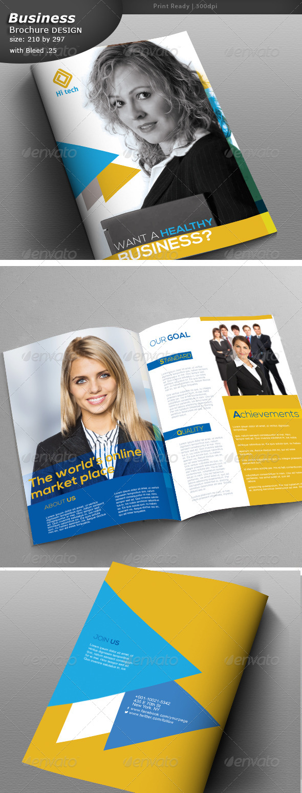 GraphicRiver Business Brochure Design 8179455