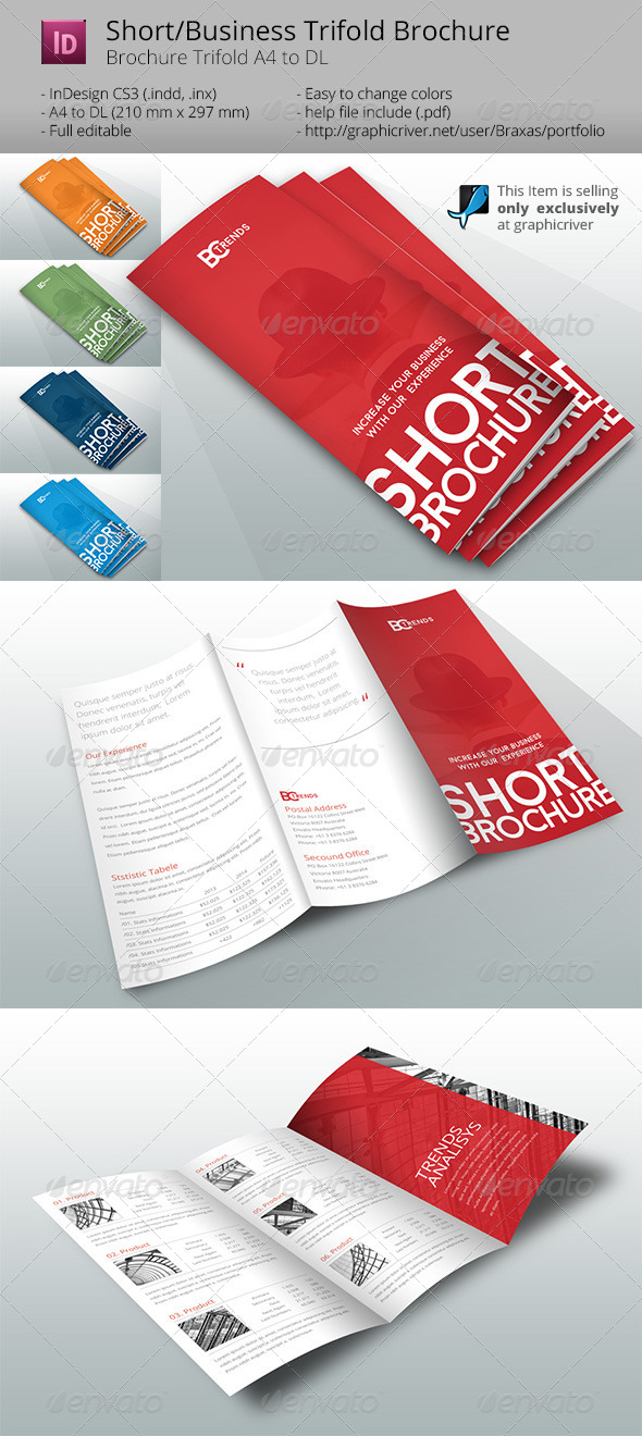 GraphicRiver Business Short Brochure 8179679